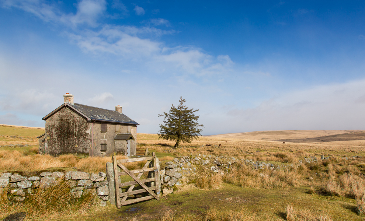 002 Dartmoor & Upland-NunnsCrossFm_Mar2015-8