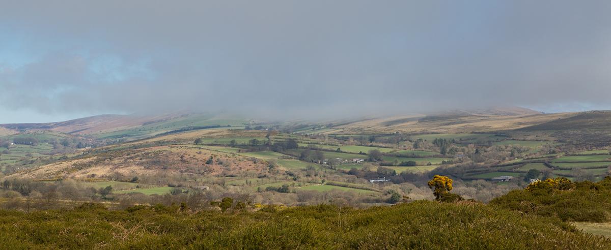 015 Dartmoor & Upland-Dartmoor_Mar2017-3