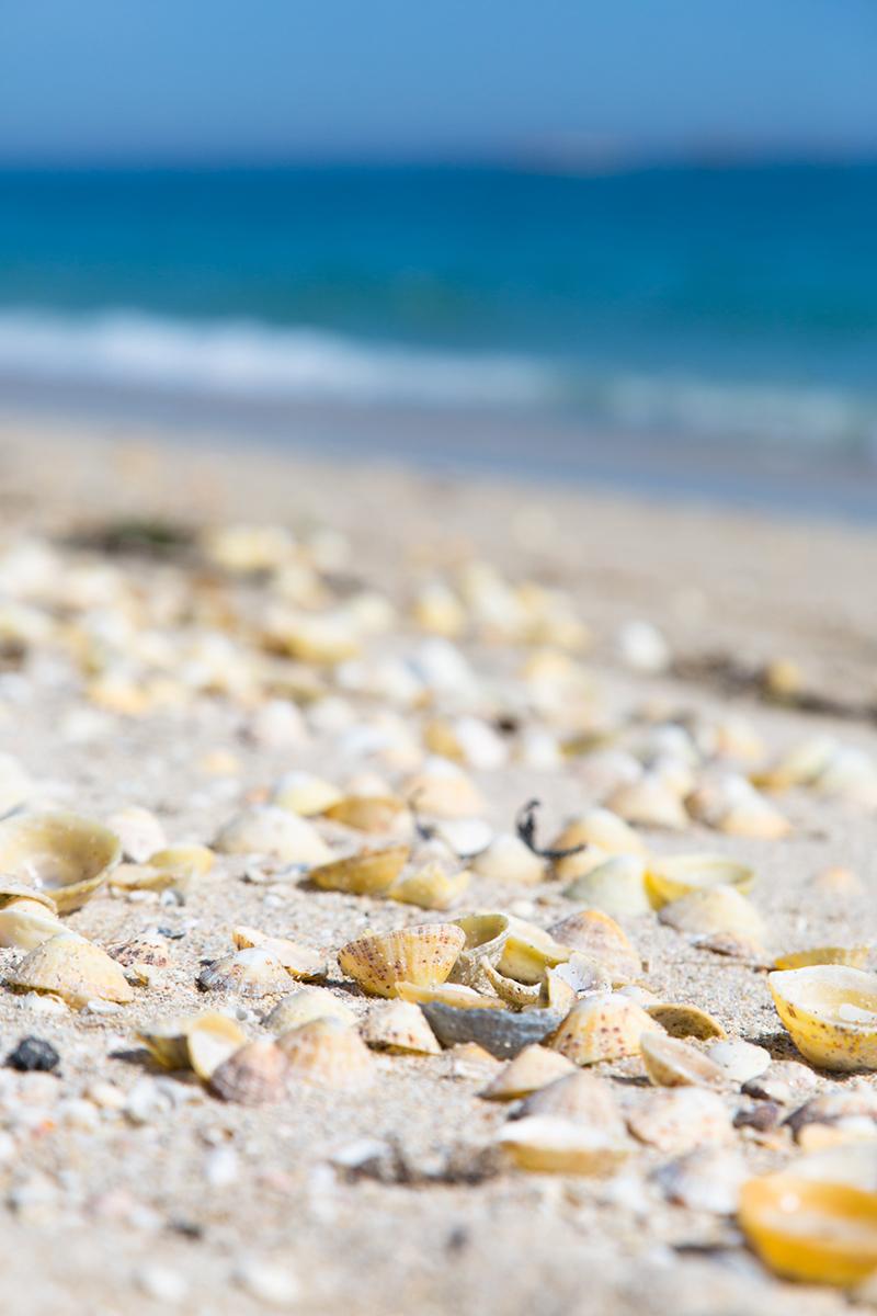 016 Beaches_016 BeachesChannelIslands_Sept2016-19