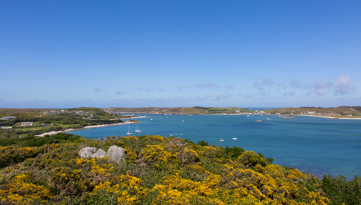 017 Isles of Scilly_051_Scilly_May2016