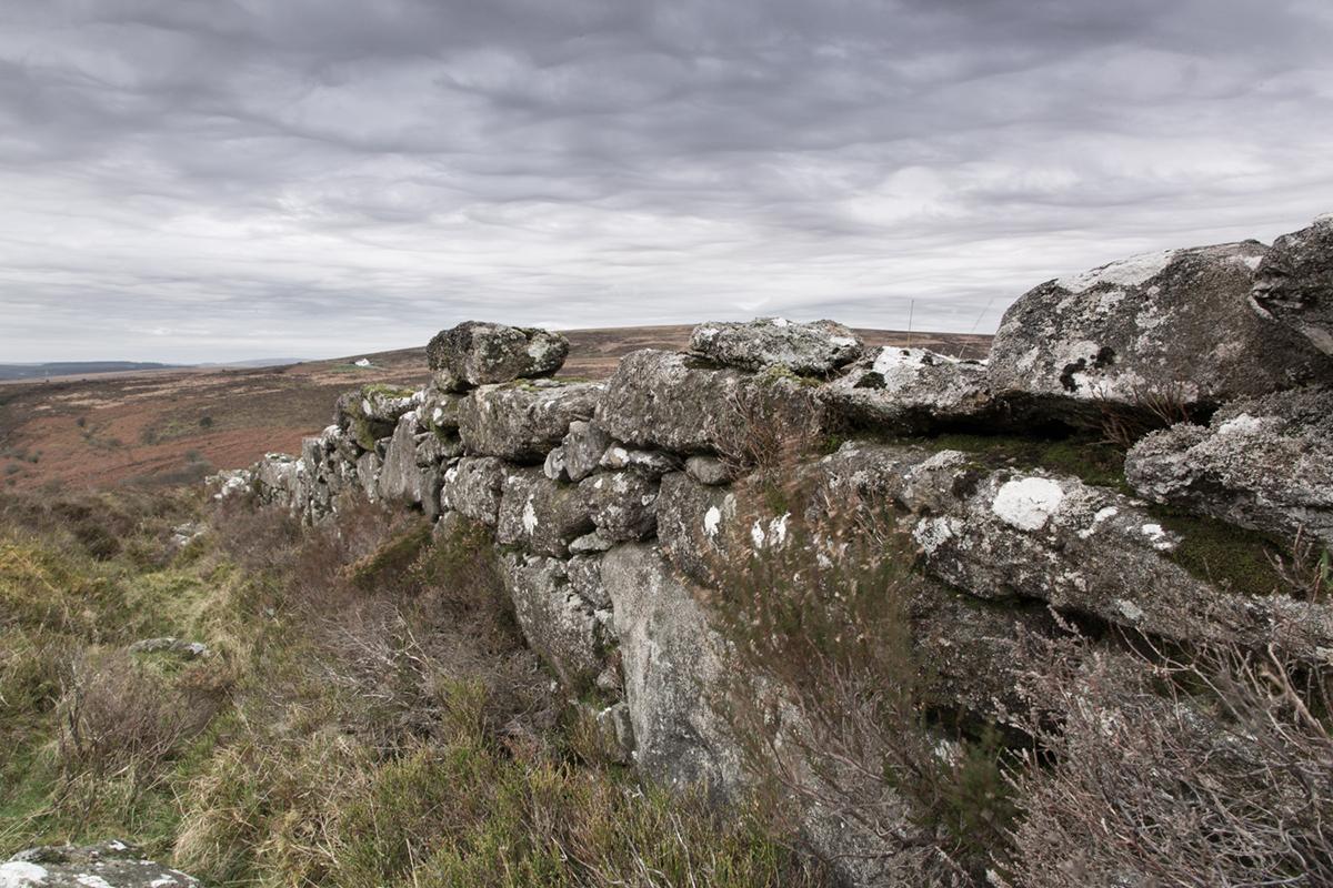 021 Dartmoor & Upland-Dartmoor_Dec2nd2015-3