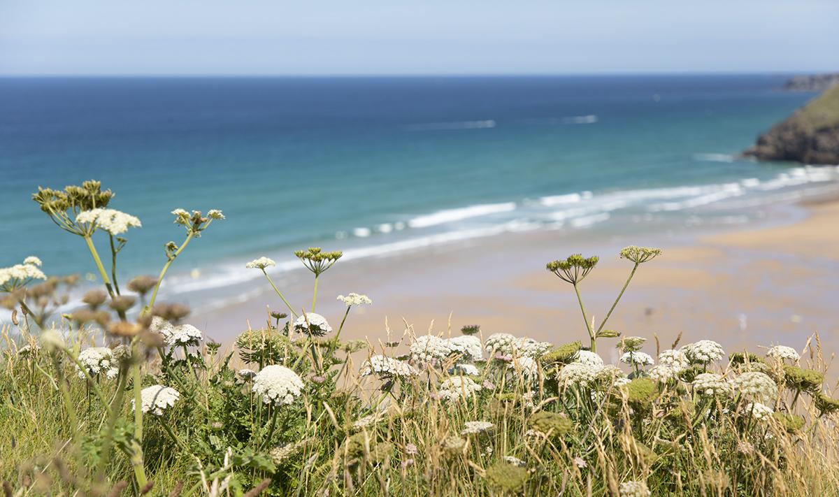 022 Beaches_022 BeachesMawgan_Porth_July2019-4