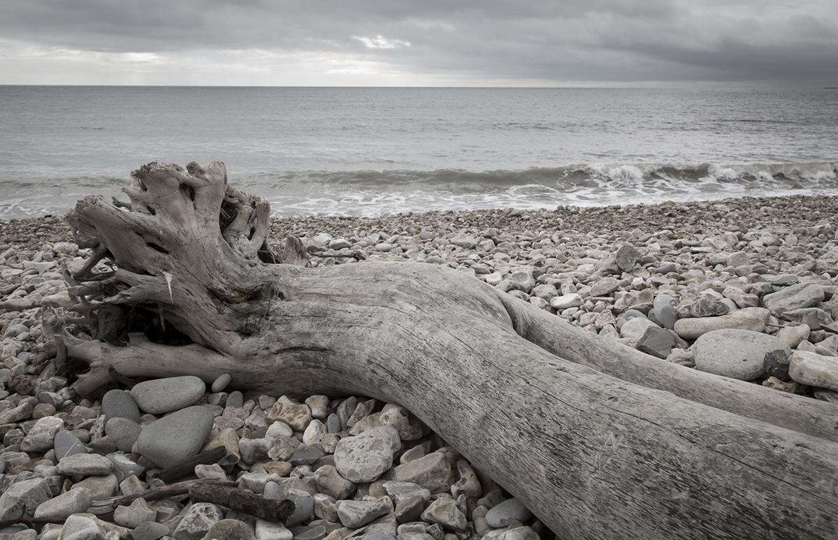 024 Beaches_024 BeachesCharmouth_Nov2017-8