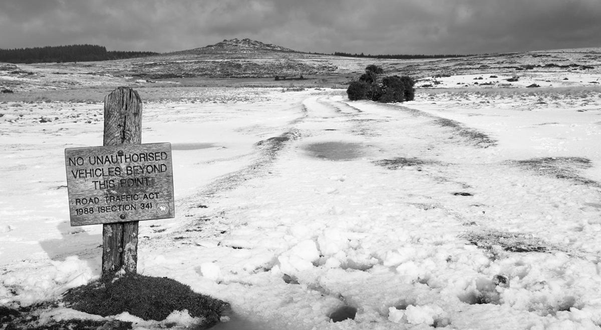 027 Dartmoor & Upland-DartmoorFeb1st2015-4