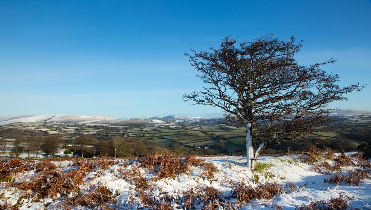 032 Dartmoor & Upland-DartmoorSnowJan15-6