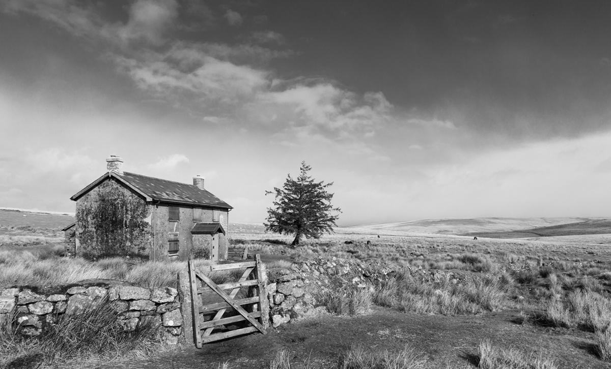 033 Dartmoor & Upland-NunnsCrossFm_Mar2015-25
