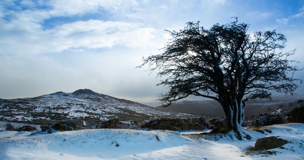034 Dartmoor & Upland-DartmoorSnowJan15-10