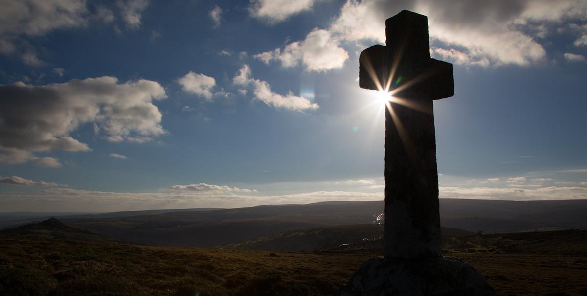 036 Dartmoor & Upland-Dartmoor_Dec2014-12
