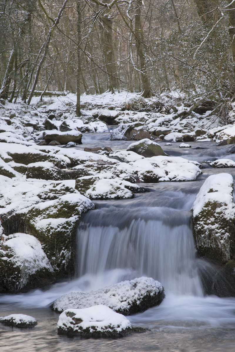 037 Rivers & Woodland_ErmeSnow_Feb28th2018-13