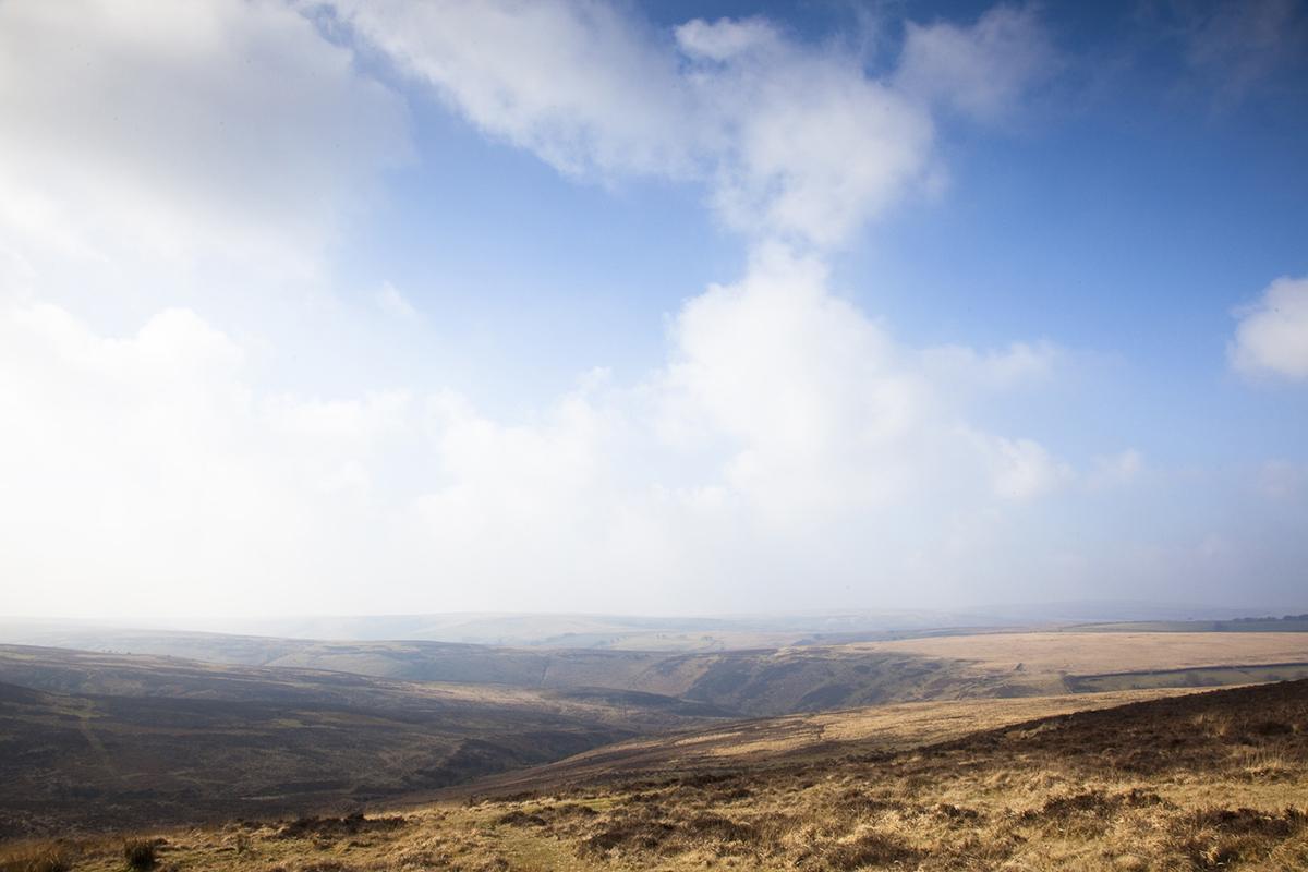 039 Dartmoor & Upland-Exmoor-3
