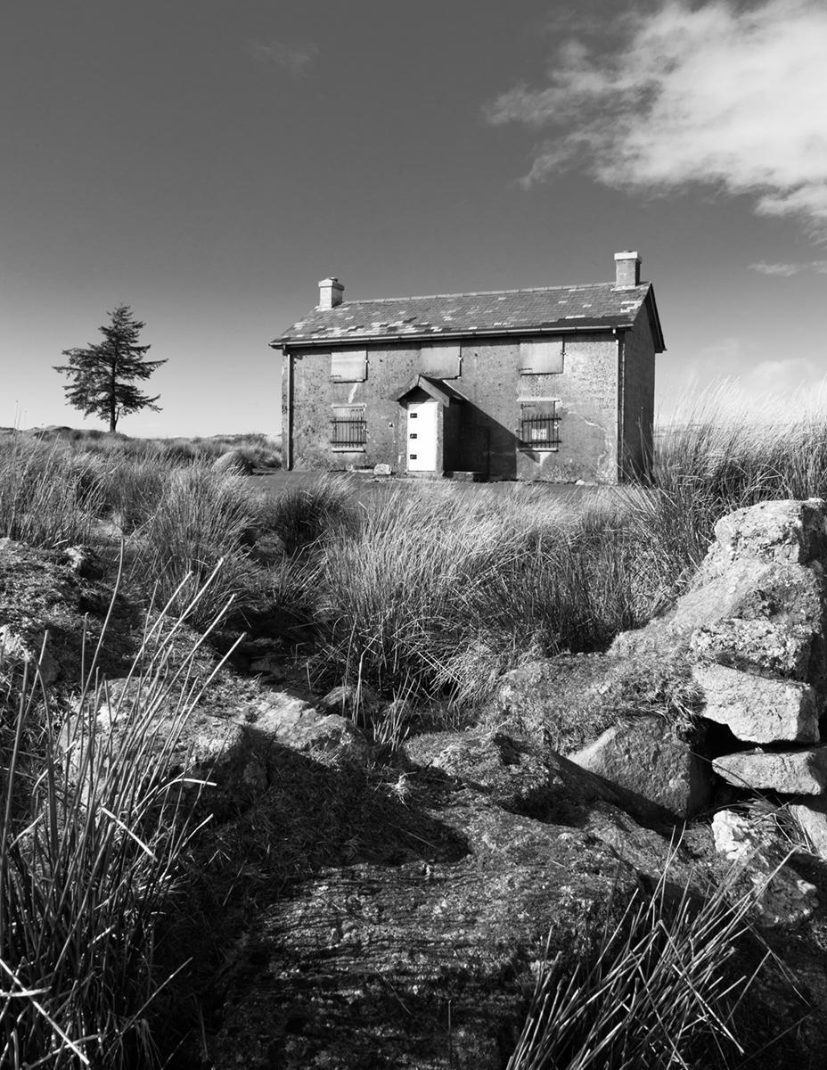 040 Dartmoor & Upland-NunnsCrossFm_Mar2015-14