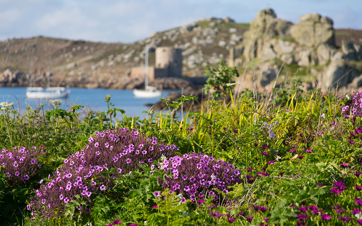 044 Isles of Scilly_004_Scilly_May2016