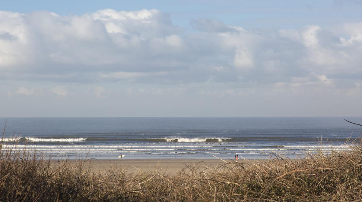 046 Beaches_046 BeachesSaunton_Nov13th2017-23