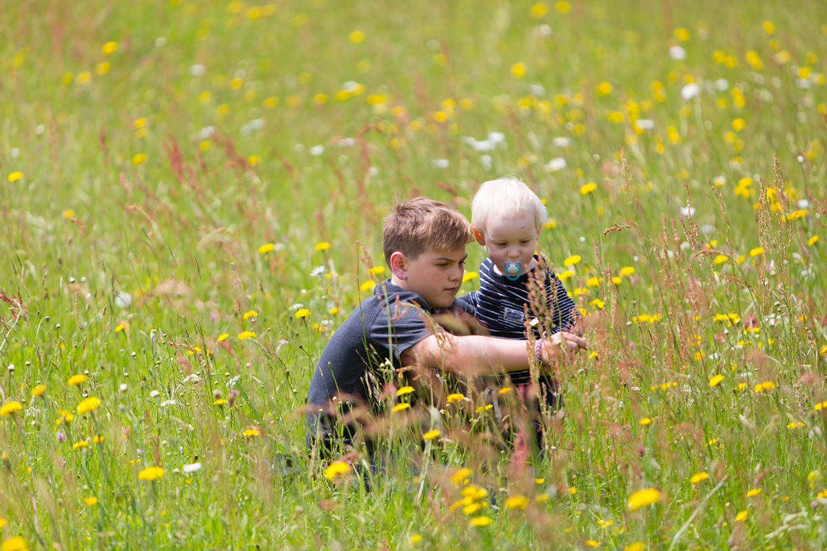 050 Outdoor Family Portraits
