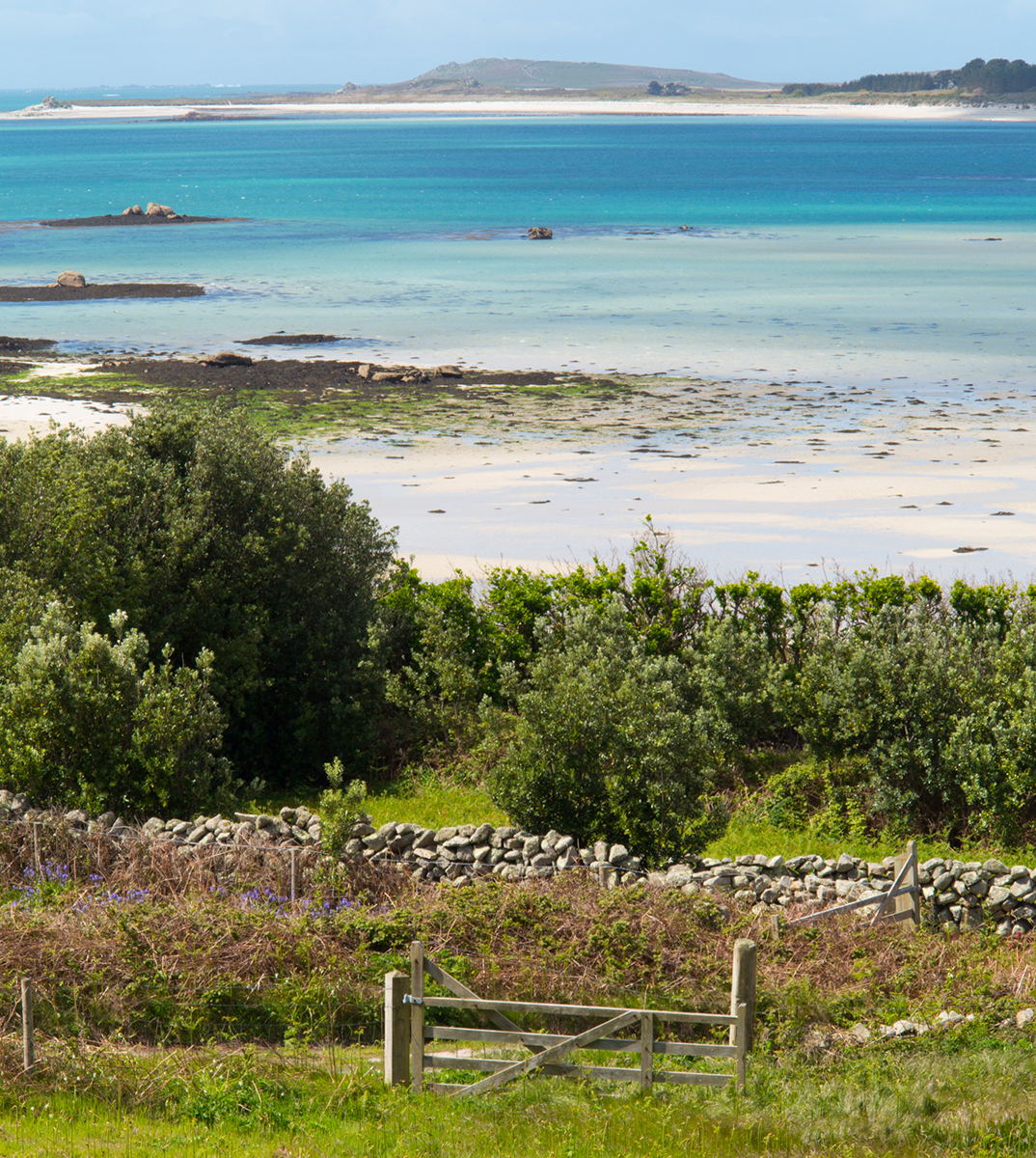 056 Isles of Scilly_ScillyMay2014-97