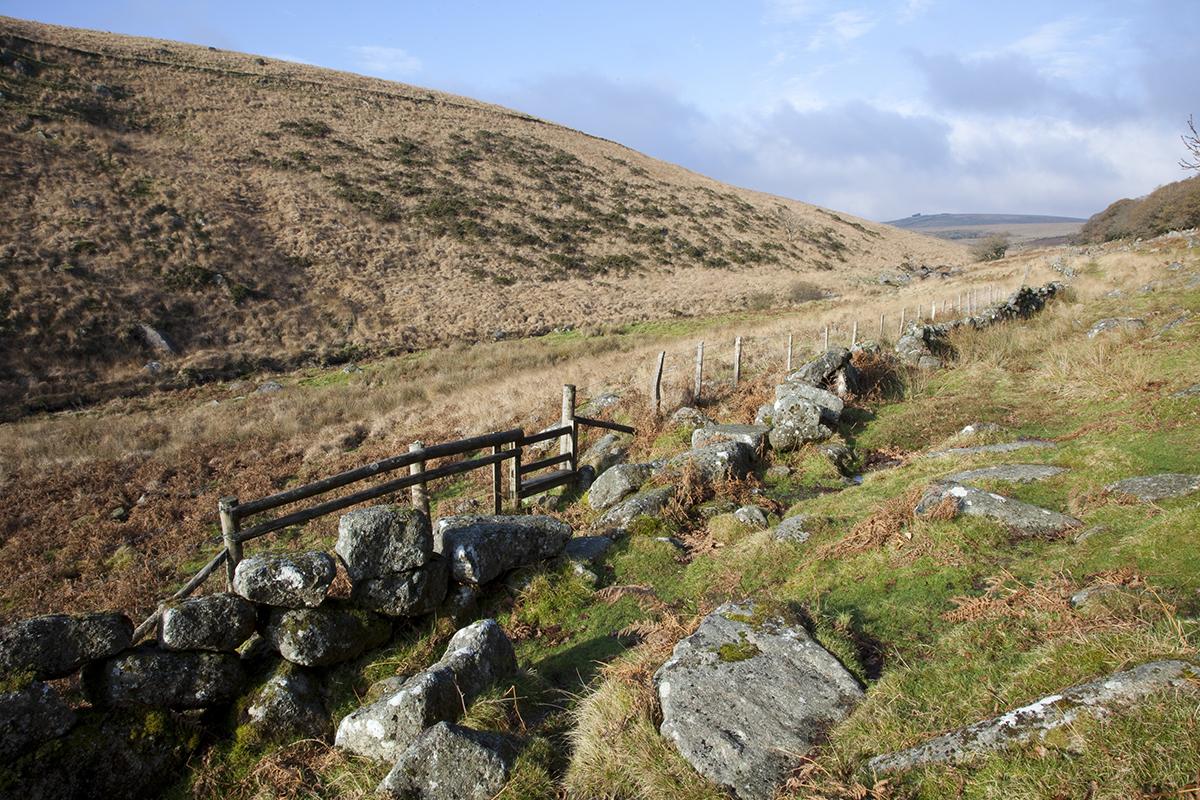 057 Dartmoor & Upland-WistmansWoodWestDart-24