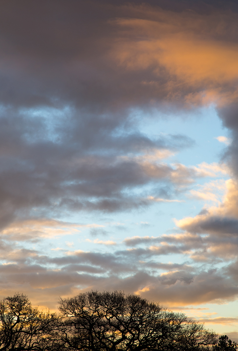 060 Skyscapes_Sky_Jan29th2014-3