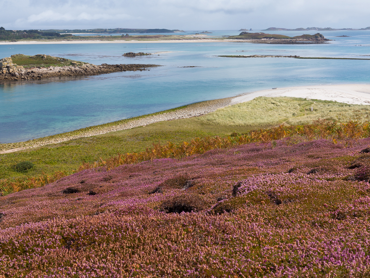 063 Isles of Scilly_Sept2014IoS&WC-8